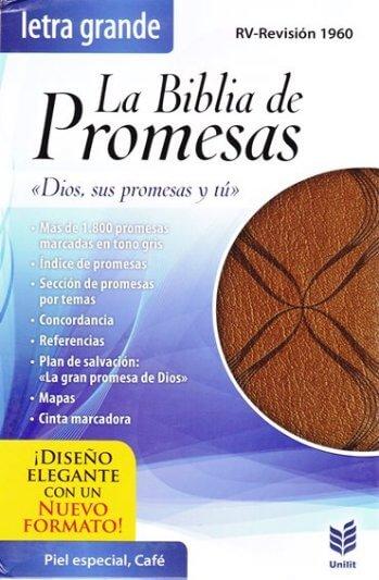 Biblia de Promesas RVR60 Letra Grande