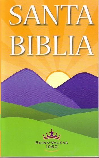 Santa Biblia: RVR60 Edición Económica  Pasta Flexible