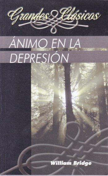 Animo en la Depresion: Trece Mensajes Basados en Salmo 42