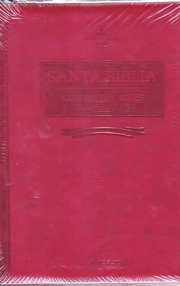 Santa Biblia RVR60 - letra super-gigante con referencias inmediantes - cierre e índice - vino