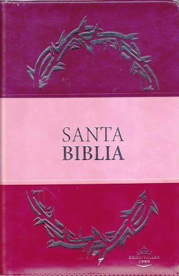 Biblia RV1960 Letra Grande Tamaño Manual con concordancia e indice en orilla (color rosa - símil piel con ziper)